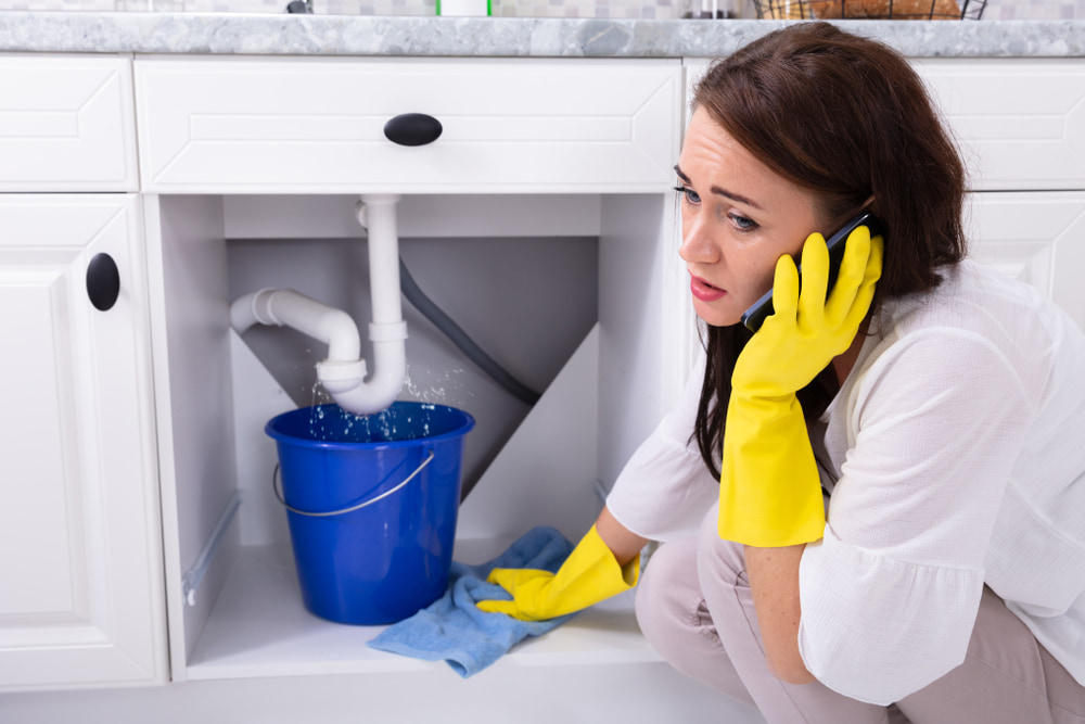 Where can I find dependable plumbing services in Cherry Hill, NJ and the region